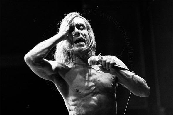 iggy pop and the stooges un rider de légende