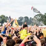 festival-des-vieilles-charrues-2012