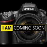 Nikon D810 versus EOS 5D Mark III. Si vis pacem, para bellum.