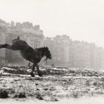Sabine Weiss, photographe. L'éternité de l'instant.