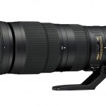 nikkor 200-500mm SHOTS