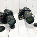 Nikon D500 au pied de mon sapin de Noël. Le conte est bon.